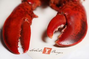 restaurant catering berlin lecker hummer essen lobster burger. Black Bedroom Furniture Sets. Home Design Ideas